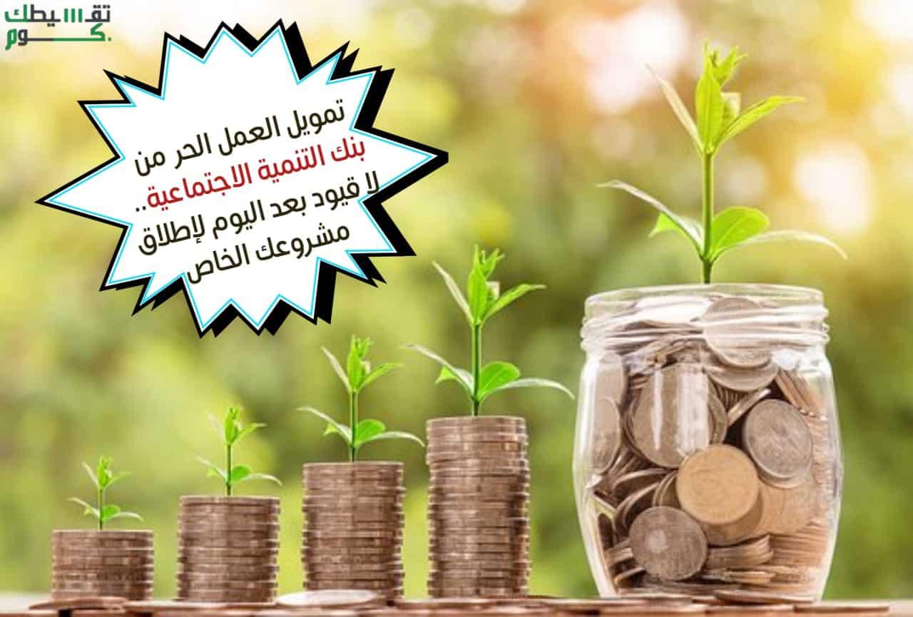 تمويل-العمل-الحر