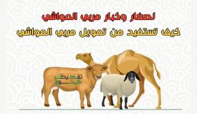 تمويل مربي المواشي السعوديين .. كيفية دعم صغار مربي المواشي بمبلغ 100 الف ريال ؟